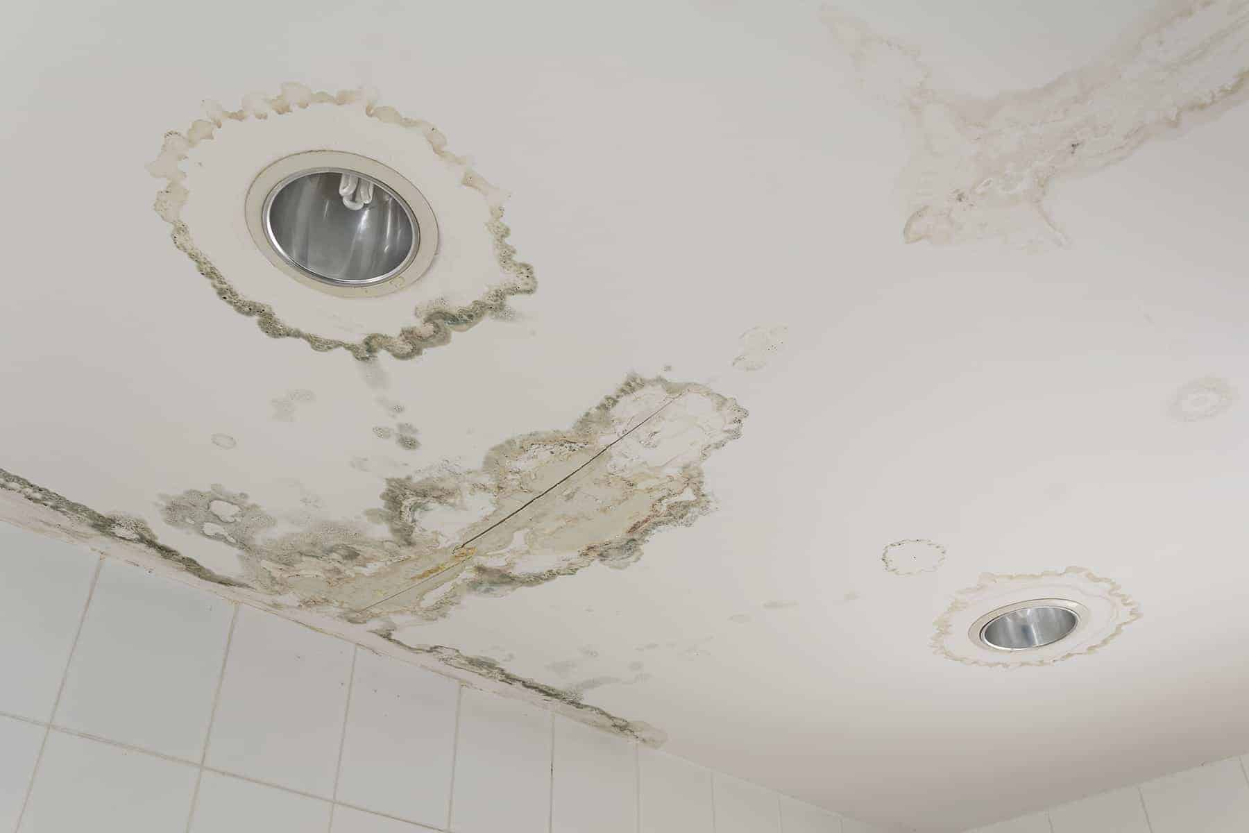 water leaks from the ceiling